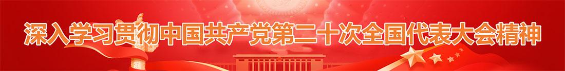 中共共产党成立100周年